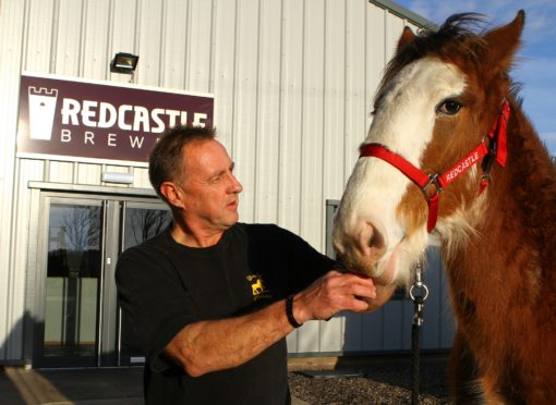 Judges include  John Anderson from Arbroath, who will place the Clydesdale in-hand females.
