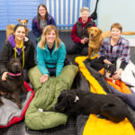 Camp out at the kennels raises £800 for dog rescue charity