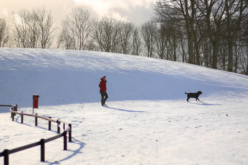A dog walker enjoyed a sunny spell in the snow at Gillies Park, Barnhill. Kris Miller/DCT Media