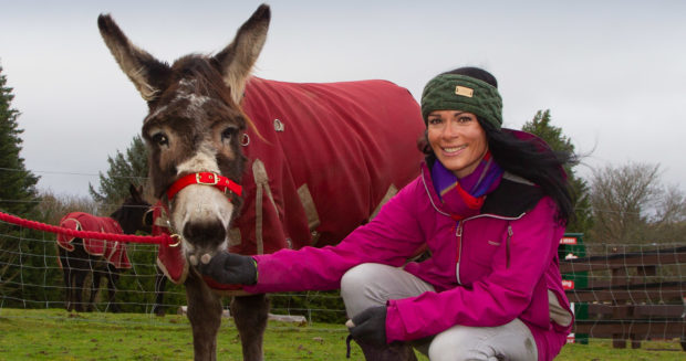 The Perfect Christmas Present.Adopting A Rescued Donkey Or Pony Could Be The Perfect