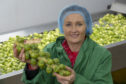 Peter Stirling's wife, Wendy, with some of the sprouts heading to M & S.