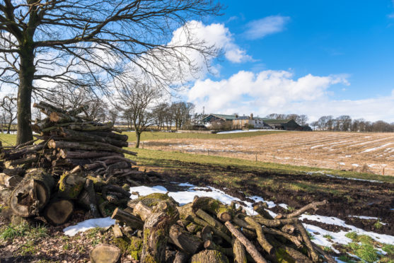 The Scottish Land Commission believes LVT could help deliver land reform objectives.