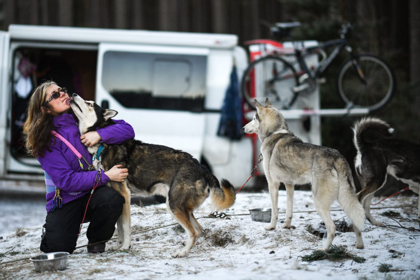 Musher Julie Platt and her huskies practice at a forest course ahead of the Aviemore Sled Dog Rally on January 23, 2019 in Feshiebridge, Scotland.