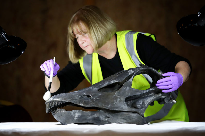 Head of Conservation Lorraine Cornish cleans the skull of Dippy, the famous diplodocus from the Natural History Museum, which is being put back together after being transported to Glasgow in 16 bespoke crates, ahead of going on display in the main hall at the Kelvingrove Art Gallery and Museum.