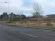 The land at Orchardbank