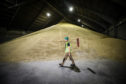 Brexit could bring opportunities but arable farmers are advised to consider the risks of storing grain beyond March.