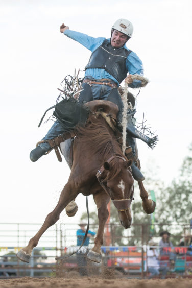 Jayden Blacker competes in the saddle bronc ride during the Mudgee Show Rodeo .