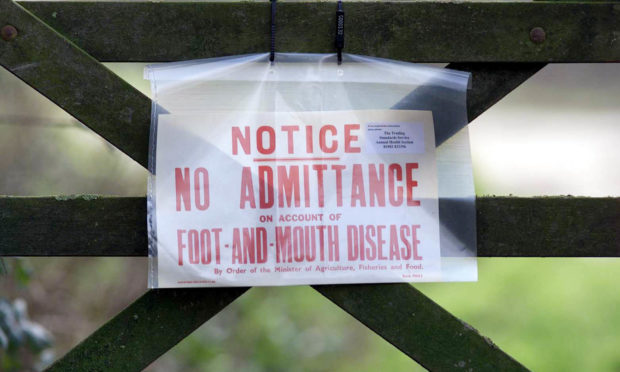 Wednesday, February 21 2001, where Ministry of Agriculture officials were investigating the possibility of an outbreak of foot-and-mouth disease.
