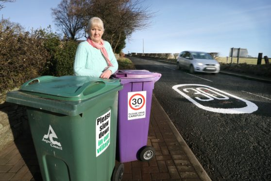 Mrs Mauran next to her 'slow down' wheelie bin signs