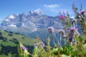 Mountain peaks around Morzine in summer.