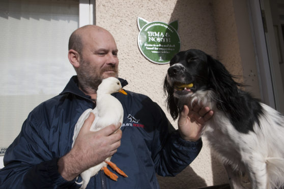 Paul Wilkie with North the duck and Irma
