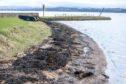 Oil contaminating the shoreline at Limekilns.