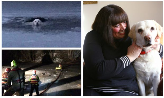 Mael Sayer at home near Edzell with her dog Maggie following the ordeal.