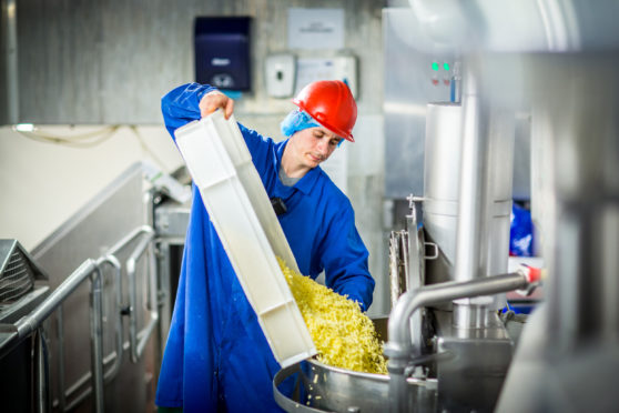 A Strathmore Foods technician loads up for a new batch of macaroni cheese.