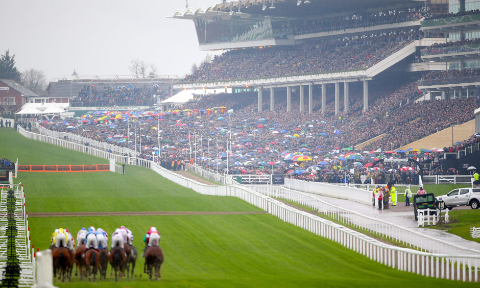 Runners and riders compete in the Sky Bet Supreme Novices' Hurdle. Nigel French/PA Wire