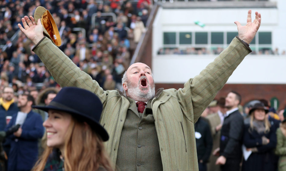 Racegoers celebrate after the Ryanair Chase.