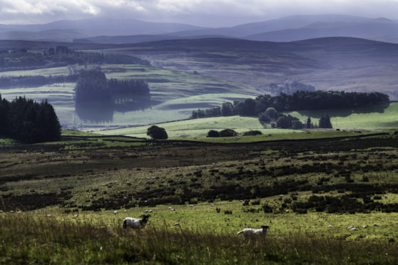 The Scottish Tenant Farmers Association is backing change.