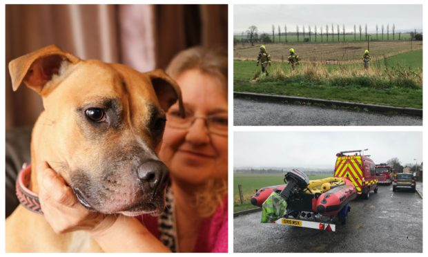 Left: Teresa with pooch Ajah after the ordeal. Right: Rescuers at the well.