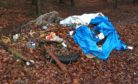 Recent flytipping in Morendy Woods