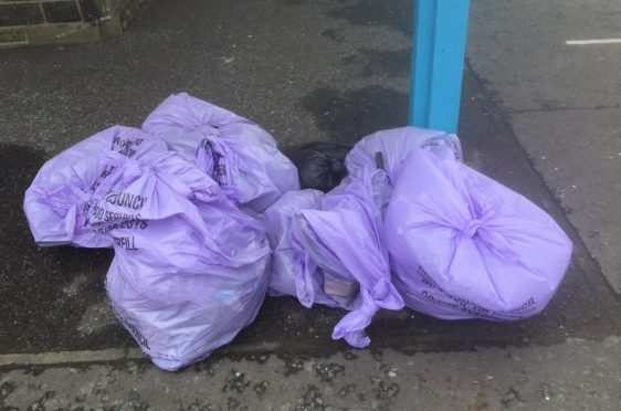 The rubbish collected during Sunday's beach clean.