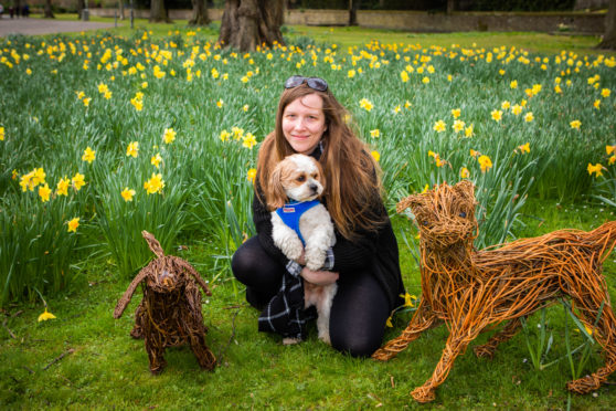Katie McCandless-Thomas, of Dog Friendly Perthshire, and her dog Baxter were there to support the opening of the South Inch Pavilion.