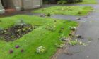 The damage at Boyle Park