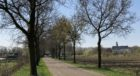 Vught today