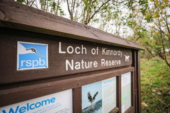 Loch of Kinnordy Nature Reserve.