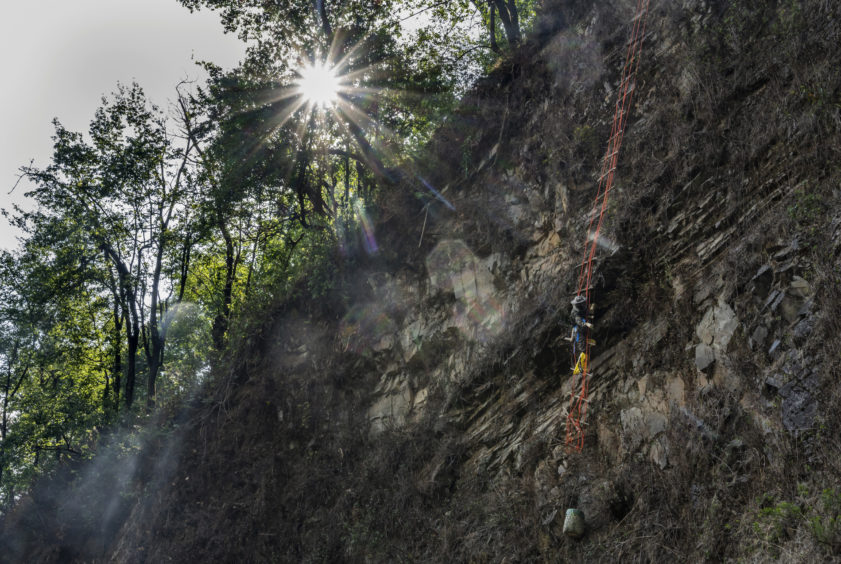 Chinese ethnic Lisu honey hunters Dong Haifa hangs on a makeshift ladder while gathering wild cliff honey from hives in a gorge on May 30, 2019 near Mangshi, in Dehong prefecture, Yunnan province China.