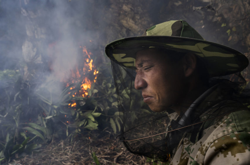 Chinese ethnic Lisu honey hunter Ma Yongde sit still next to a fire he set to deter bees before gathering wild cliff honey from hives in a gorge on May 10, 2019 near Mangshi, in Dehong prefecture, Yunnan province China.