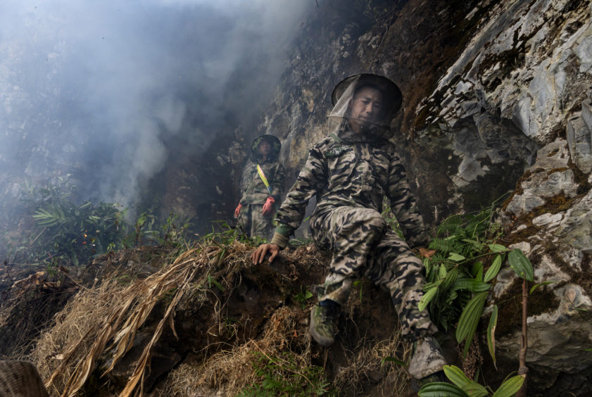 Chinese ethnic Lisu honey hunters Dong Haifa, right, and Ma Yongde set a fire to deter bees before gathering wild cliff honey from hives in a gorge on May 10, 2019 near Mangshi, in Dehong prefecture, Yunnan province China.