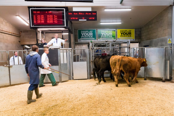 Auctioneers have called for more of a dialogue with QMS.