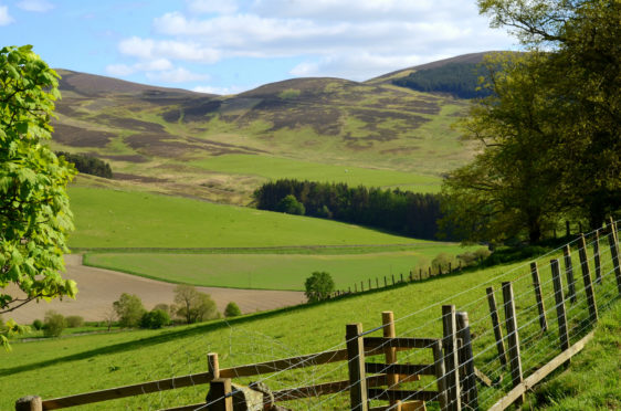 Scottish agriculture wants to cut greenhouse gas emissions while retaining the capacity to produce high-quality food.