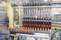 One of the bottling lines at Diageo's bottling facility in Leven.