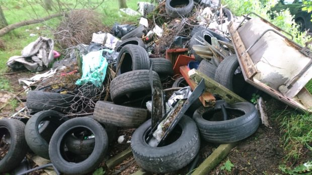 The tyres dumped in woods outside Brechin.