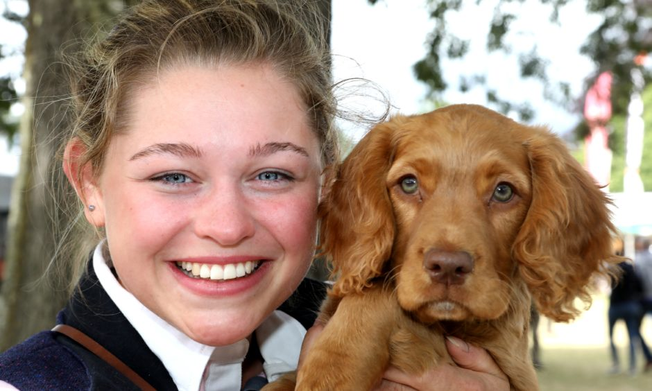 """Holly Busby (19)  with a 12 week old working cocker called """"Koda""""."""