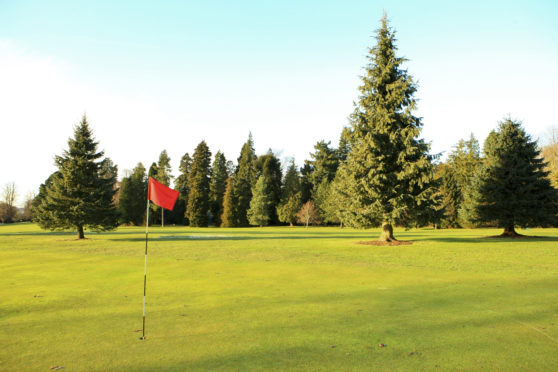 Camperdown Golf Course.