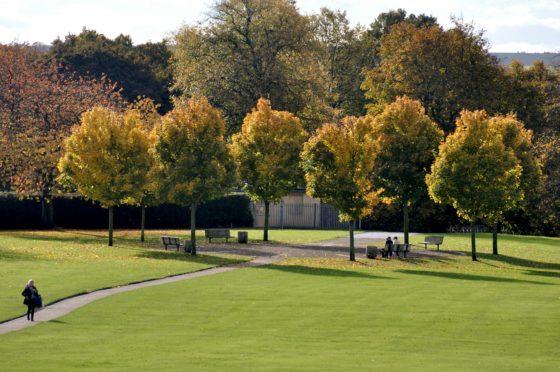 Baxter Park.