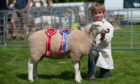 The annual Perth Show, held at the South Inch, was as well attended as ever.