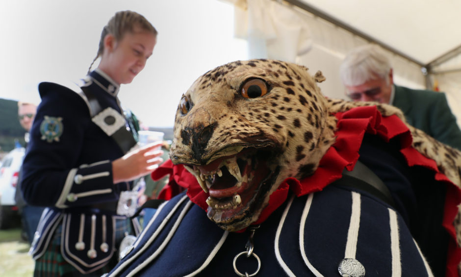 A band member from the Ballater and District pipe band wears a leopard skin base drum apron. The Prince of Wales, known as the Duke of Rothesay while in Scotland, is attending the Ballater Highland Games in Monaltrie Park.