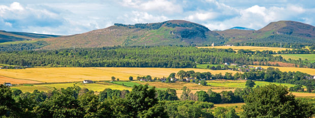 All sectors of the farming industry in Scotland will now make a case for a share of the funds.