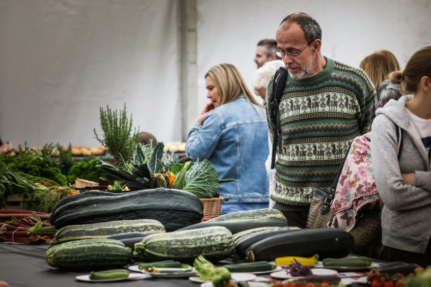 A gentleman sizes up the courgettes in his matching jumper.